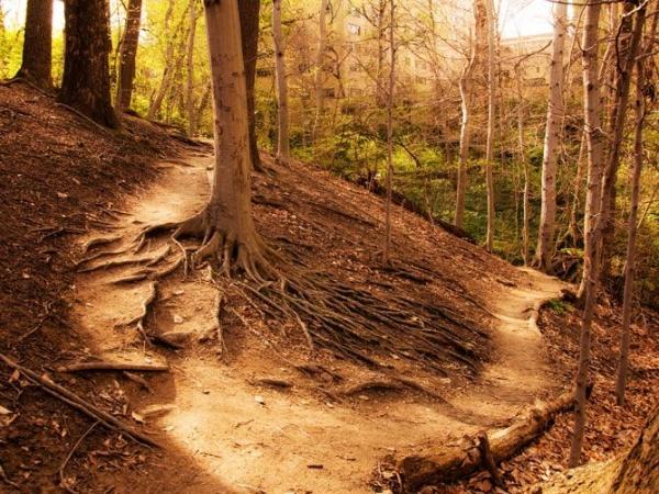 Sreya-preya-two-paths